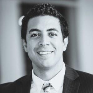 Ty E. G. Hinnant, Austrian lawyer in USA