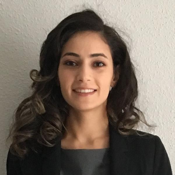 verified Lawyer in Houston Texas - Dina Ibrahim